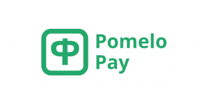 Pomelo Payadds ex-Visa exec as new CEO