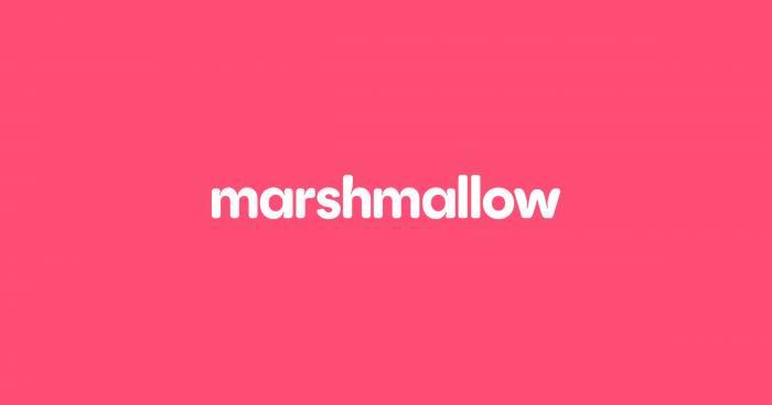Marshmallow becomes the second black-founded UK unicorn