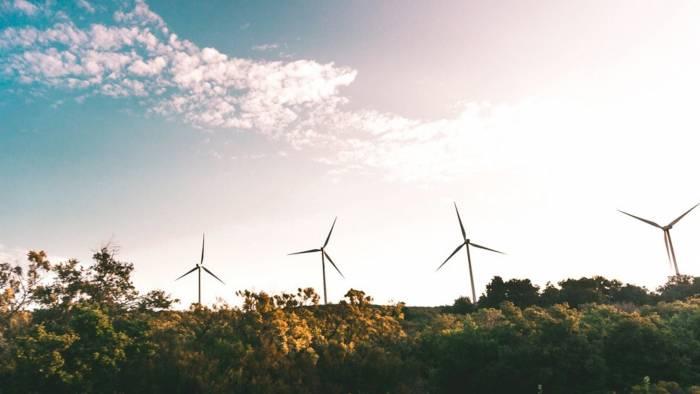 Meet the fintechs leading Sweden's green revolution