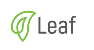 Leaf Global Fintech Corporation