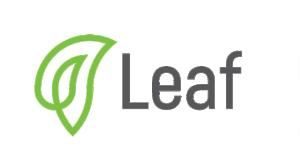 Leaf Global Fintech Corporation