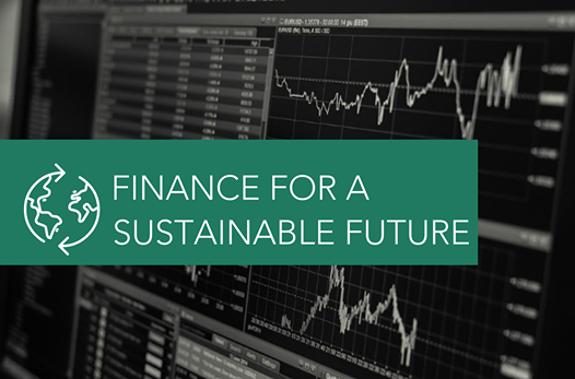 Finance for a Sustainable Future 2020 Conference