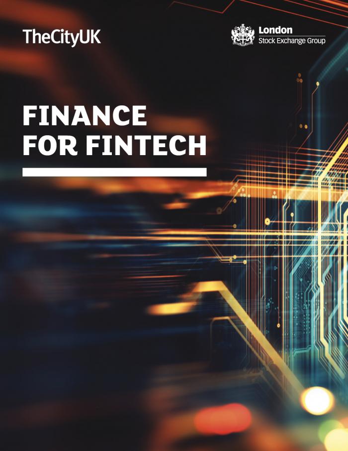 Finance for Fintech