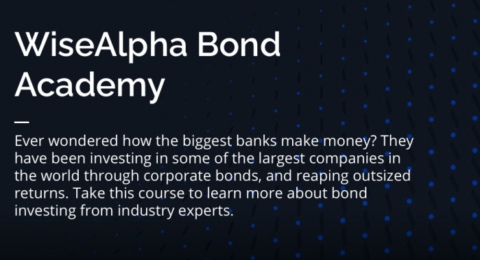 WiseAlpha Bond Academy - Unit 1